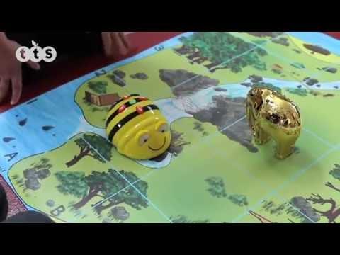 Bee-Bot Starterset