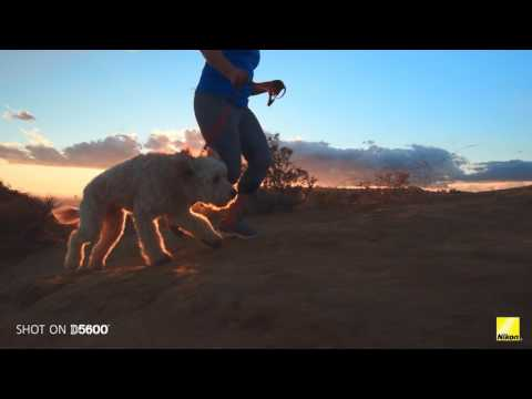 Nikon D5600: Breakthrough with Shawn Corrigan