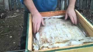 Бипин против варроатоза пчел