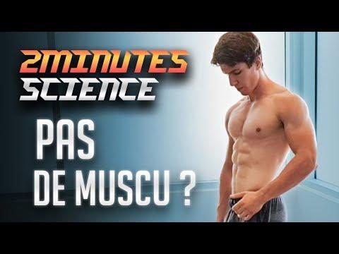 Les liasses des muscles de larticulation humérale