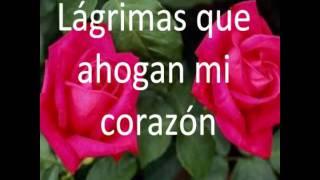 lloran las rosas