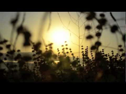 Praktikos - Rainbow Sunshine feat. Lola (Official Music Video)