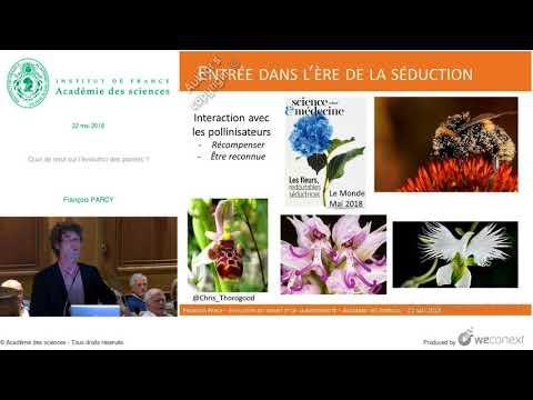 Vidéo de François Parcy