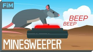 We Use Rats To Clear Minefields - Here's How