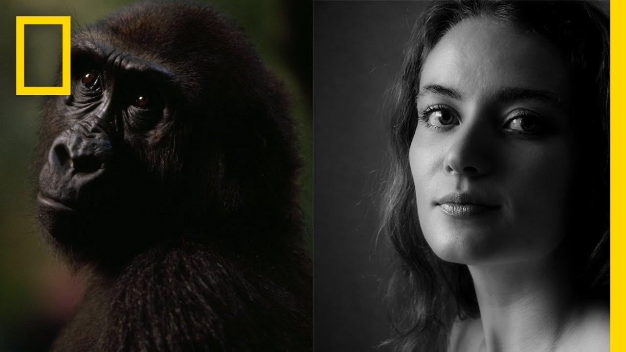 Chimps vs. Humans: Successful Societies   Nat Geo Live thumbnail