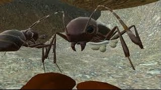 Ant Simulator 3D- GamePlay Trailer Android/Ios- HD