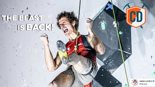 The World's BEST Comp Climbers Are Back... | Climbing Daily Ep.1716 by EpicTV Climbing Daily