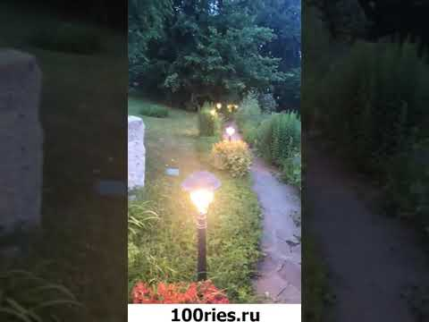 Максим Галкин Инстаграм Сторис 21 июня 2019