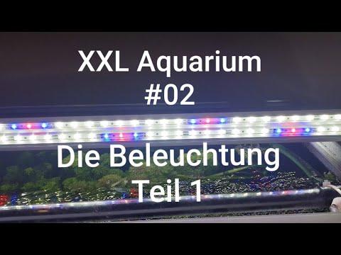 Die Beleuchtung Teil 1| Eheim LED Stripes | XXL Aquarium #02