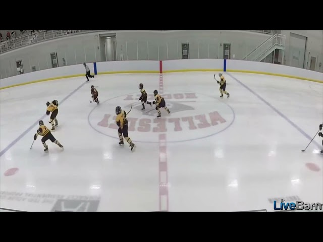 TSR Play of the Week Sept 19th