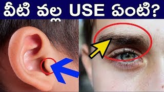 YOU DON'T KNOW ABOUT HOW AMAZING YOUR BODY AND BRAIN IN TELUGU|FACTS 4U