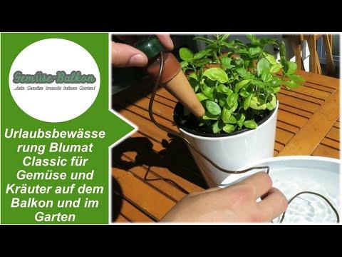 Urlaubsbewässerung Blumat Classic für Gemüse und Kräuter auf dem Balkon und im Garten