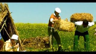 Bojalar - Anhor bo