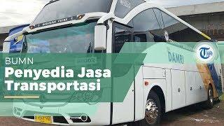 Perum DAMRI (Djawatan Angkoetan Motor Repoeblik Indonesia), Perusahaan Umum BUMN Bidang Transportasi