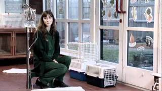 Career Advice on becoming a Veterinary Nurse by Vicky G (Full Version)
