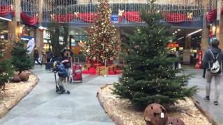 スイス発 中央スイス・ツークのデパートmetalliに飾られたクリスマスツリー【スイス情報.com】