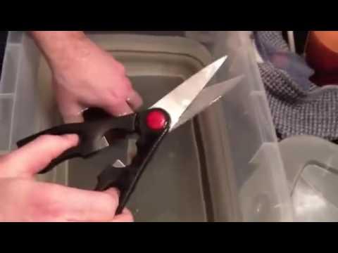 Quanto per fare lanalisi del sangue su vermi