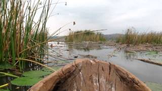 preview picture of video 'Dugout Canoe on Lake Babati, Tanzania'