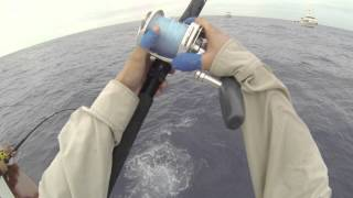 Flying Tuna - Independence Sportfishing 7 day Sept 14-21,2013 Teaser video