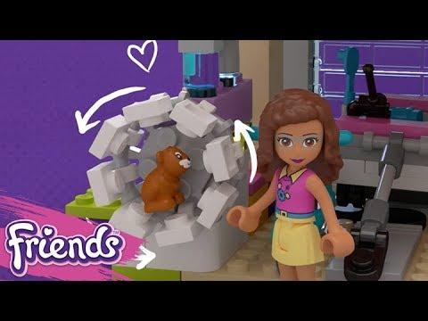 Vidéo LEGO Friends 41340 : La maison de l'amitié