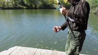 Ловля окуней летом на поплавочную удочку