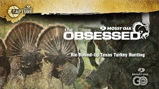 Episode 3 - The Obsessed - Rio Roundup