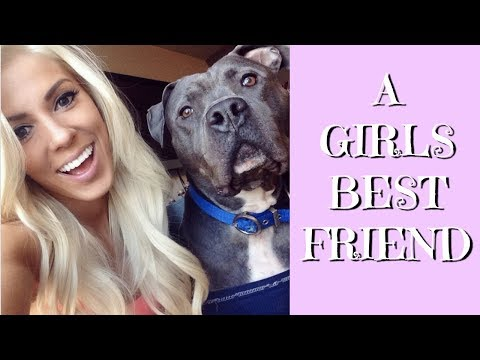 A Girls Best Friend | A Story About My Dog