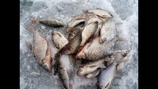 Зимняя рыбалка на яузе 2018г