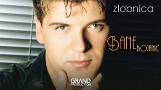 Bane Bojanic - Ova pesma moj je oprostaj - (Audio 1999)