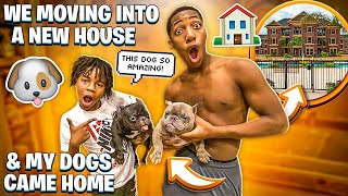 WE MOVING INTO A NEW HOUSE & MY DOGS FINALLY CAME HOME!