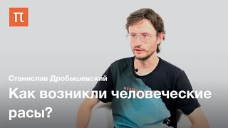 Происхождение человеческих рас — Станислав Дробышевский
