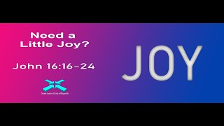 Need a Little Joy? – Lord's Day Sermons – Aug 11 2019 – John 16:16-24