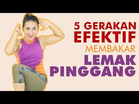 Blog pelangsing free download