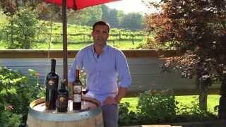 Vu ja de Vineyards & Winery For Sale