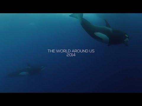 hqdefault - 2014... Este es el mundo que nos rodea