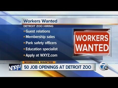 mp4 Hiring Zoo, download Hiring Zoo video klip Hiring Zoo