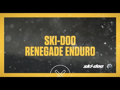 2017 Ski-Doo Renegade Enduro 900 ACE E.S. in Unity, Maine - Video 1