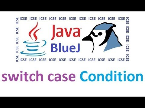 Switch Case Statement In Java