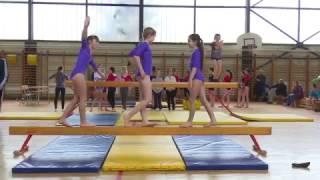 Međuokružno takmičenje u gimnastici