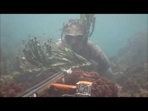 Che aggiungere a orzo di perla per pescare su un crucian