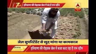 Ram Rahim to do gardening as work inside jail