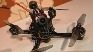 3'' ULTIMATE DJI Toothpick/ Naked Caddx Nebula Pro Vista/ FPV Drone!