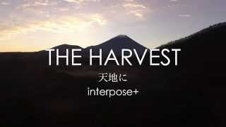 interpose+   天地に