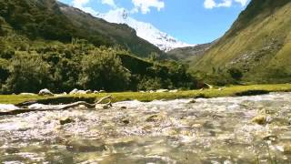 Pastorita Huaracina - Zorro zorro (Subtitulado Quechua - Español)