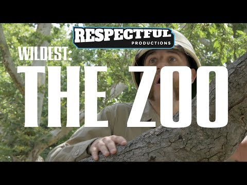 Wildest Humanity: The Zoo