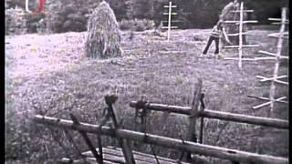 Bukanýři-ej za lužický polo