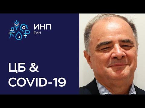Как глобальные центральные банки реагируют на COVID-19 и преуспеют ли они в своей политике? // Бушар