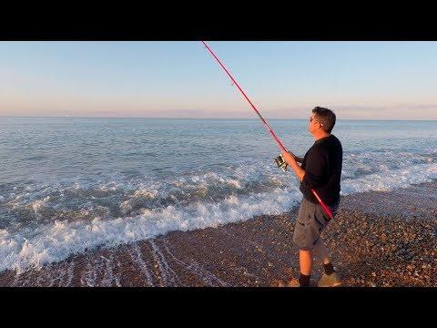 Tunge og lille fjæsing fra den engelske kyst