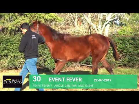 Lote EVENT FEVER