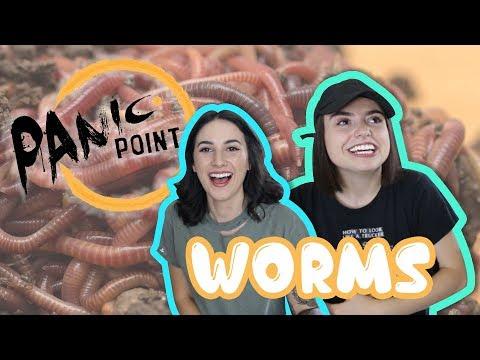 Tui langis mula sa mga worm